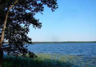 Фото озеро Біле